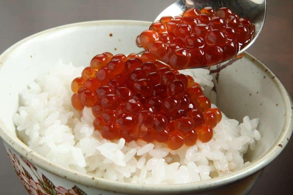 白いご飯にかけた佐藤水産のいくら醤油漬け