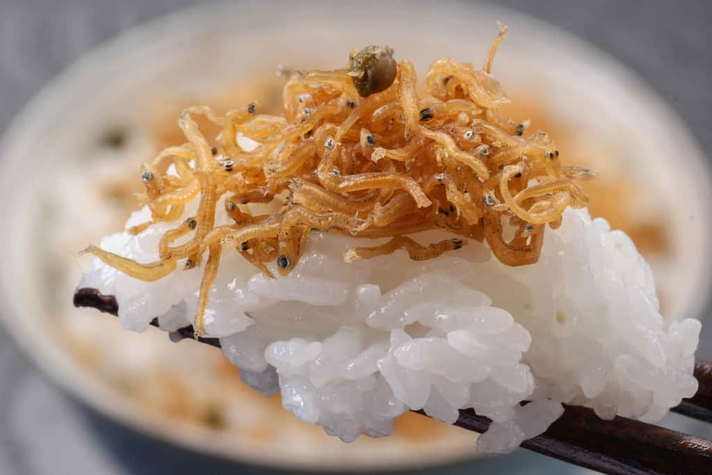 ちりめん山椒を乗せた白飯を箸でつまむ
