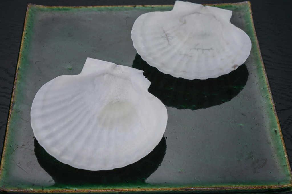 皿に乗った2枚のホタテ貝殻