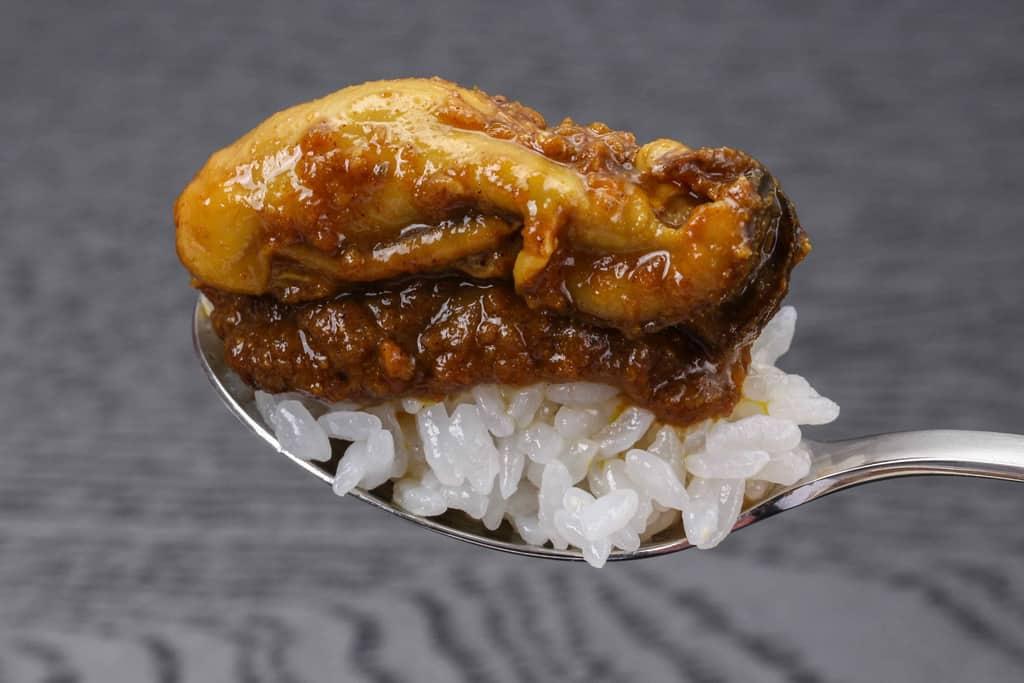 スプーンの上に白いご飯とカレーと広島産カキを乗せて