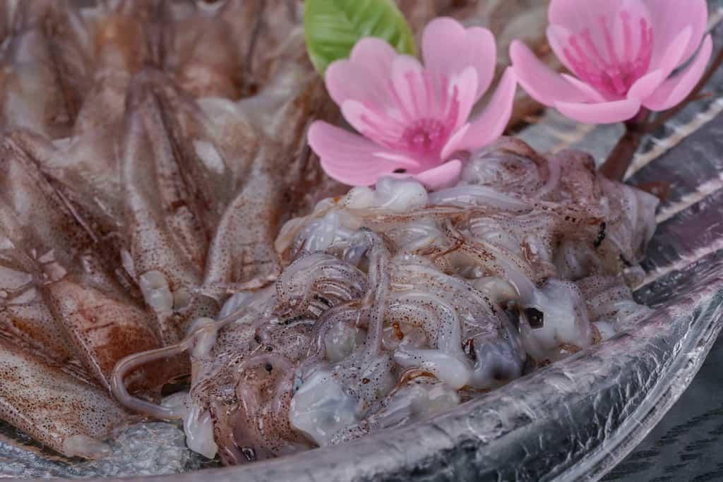 砂子商店のほたるいか刺身のゲソ山盛り