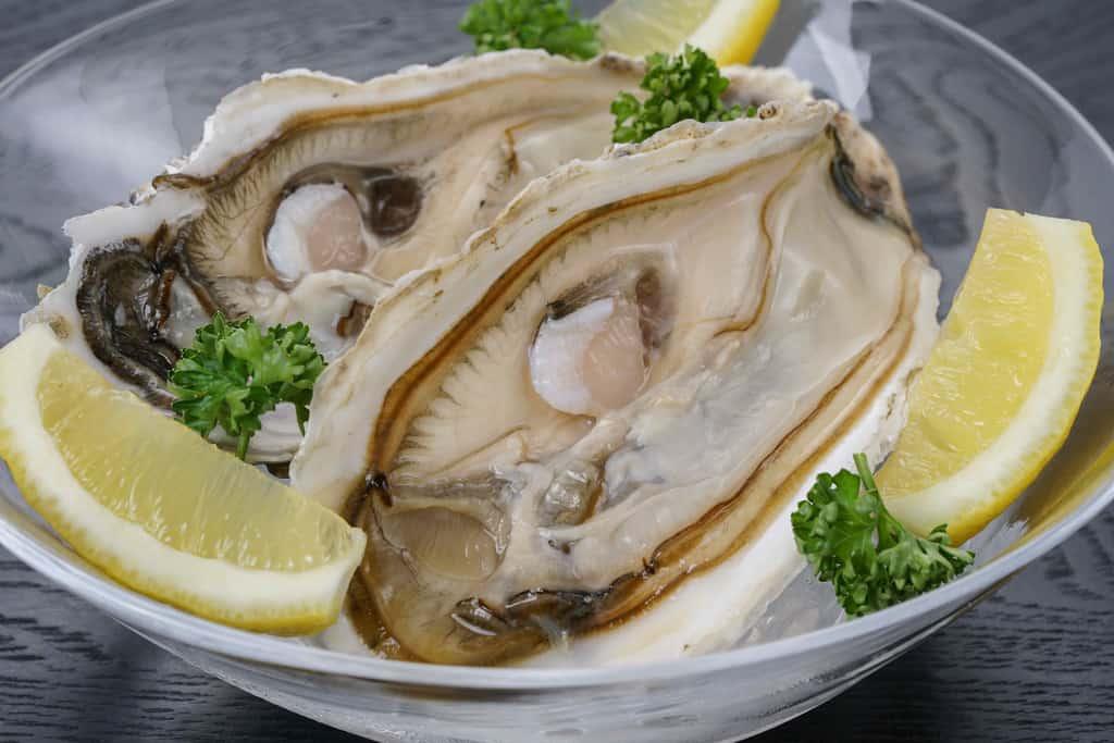 生 牡蠣 取り寄せ