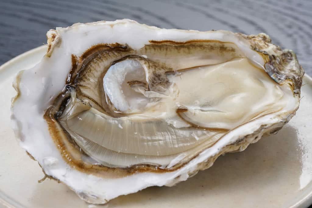 殻を開けて皿に乗せた北海道厚岸産の牡蠣まるえもん1個