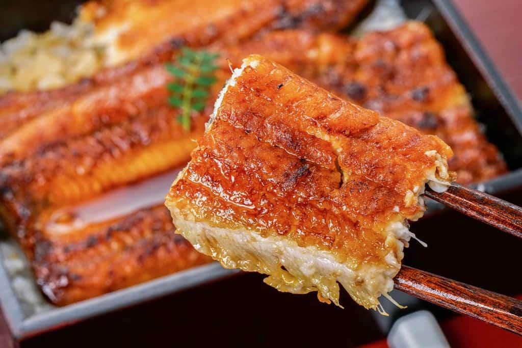 うなぎのたなか「国産うなぎ特大蒲焼き」一切れを箸で持つ、鰻の蒲焼一切れを箸でつまむ