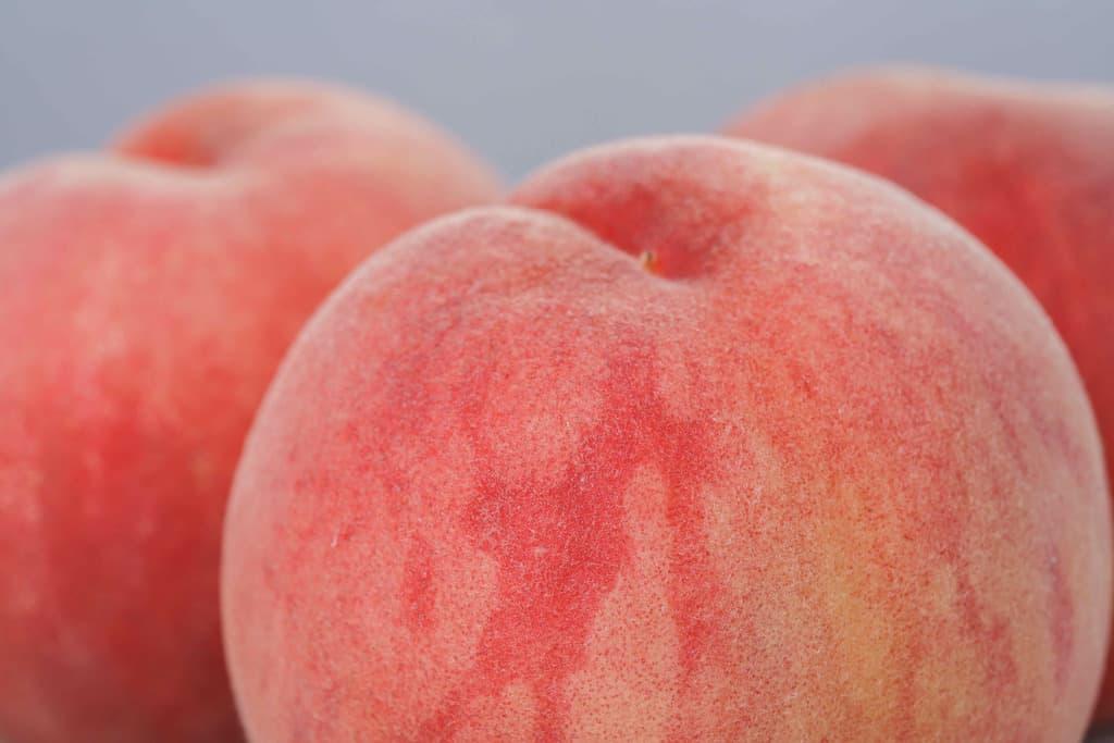 表面が産毛が見えるほど寄って撮影したJAふくしま未来の桃「伊達の蜜姫」3玉、桃のアップ写真