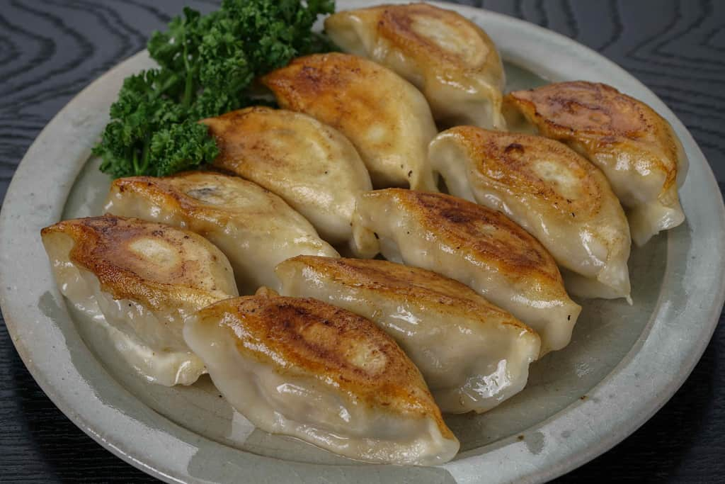 焼き目を上にして皿に盛り付けた蓮月の手づくり焼き餃子10個