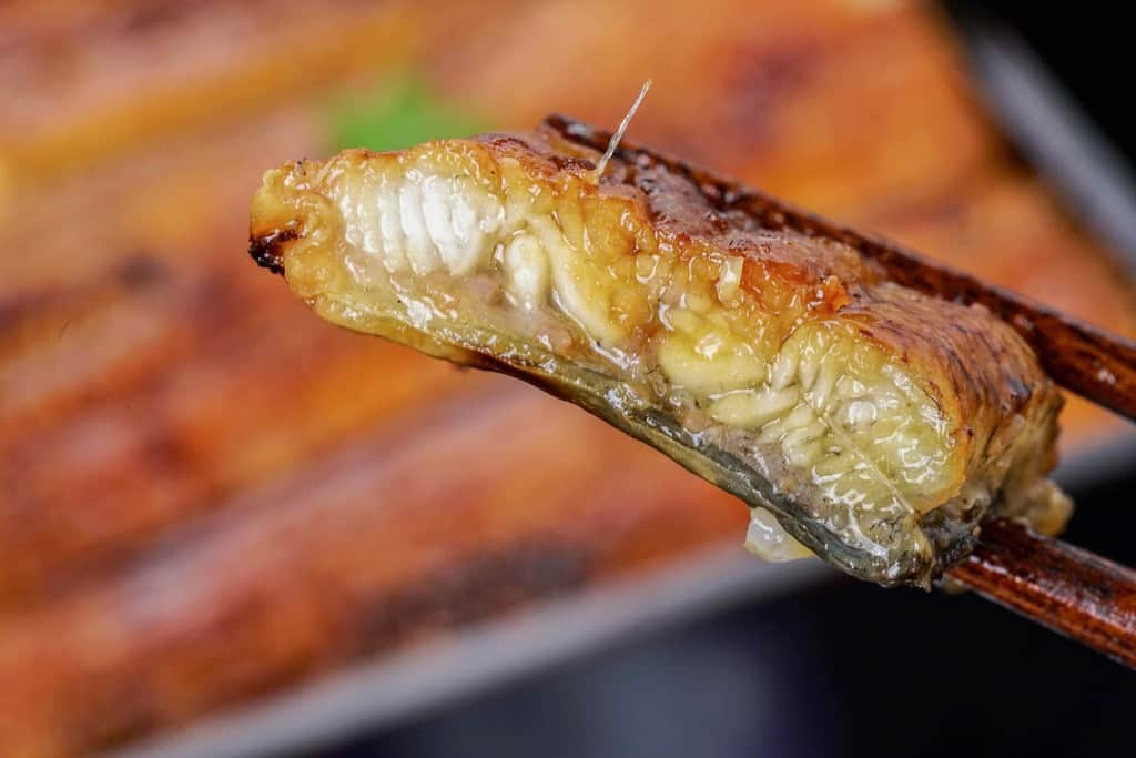 うなぎ屋かわすい(川口水産)の超特大サイズ国産ウナギ蒲焼の断面