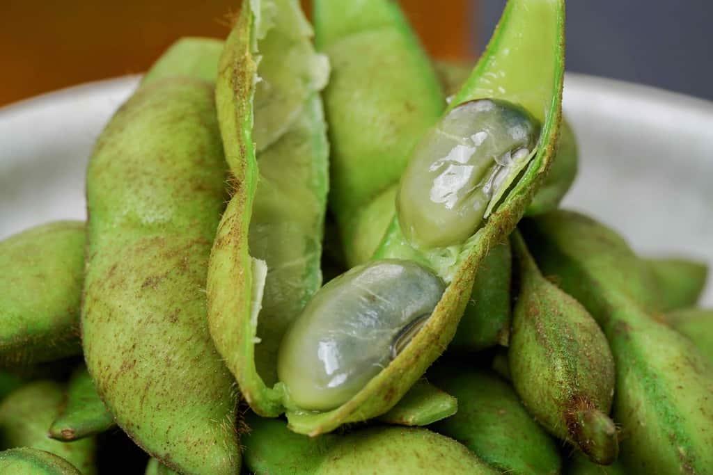茹でた枝豆のさやを割って豆2粒が見える状態、京都の枝豆「紫ずきん」の大きな豆2粒
