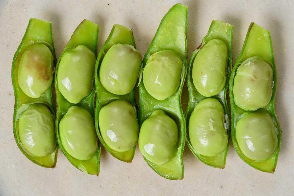 さやの半分を取って粒が見える状態で皿に並べた紫ずきん枝豆、茹でた紫ずきん枝豆10粒