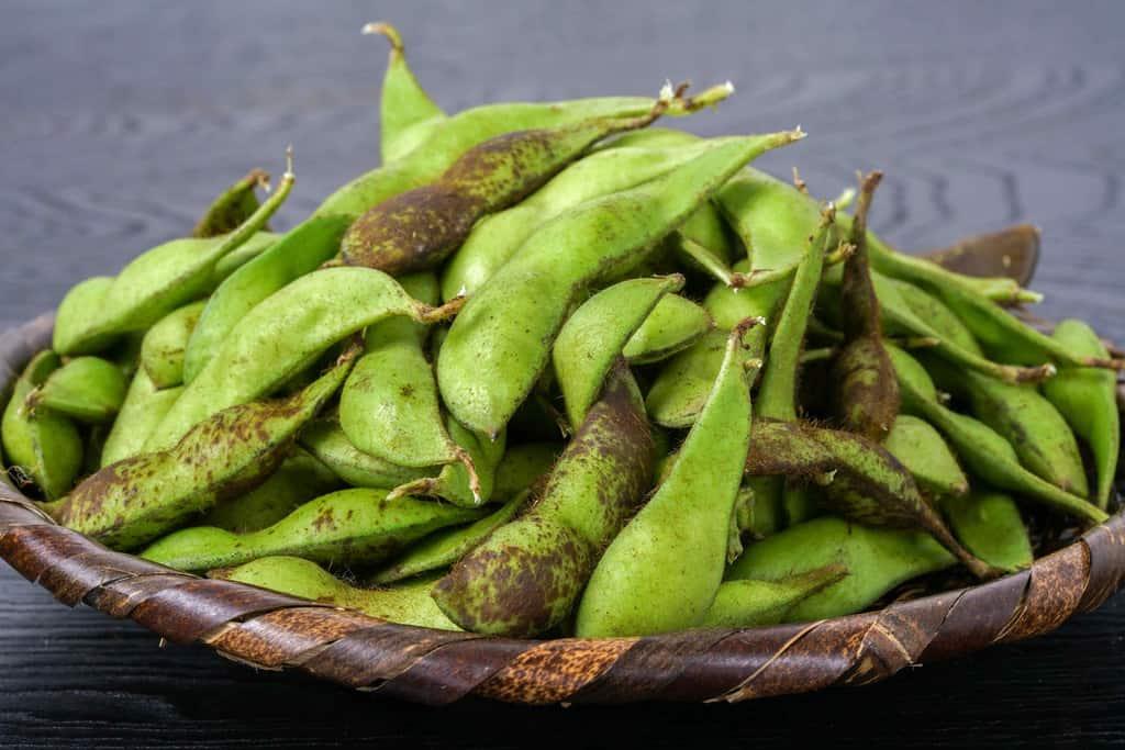 竹かごに盛られた丹波篠山産の黒枝豆