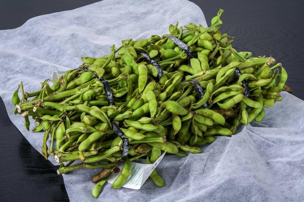 小田垣商店から届いた丹波の黒さや枝豆1kg2束、枝つきの丹波篠山産の黒枝豆、お取り寄せ枝豆