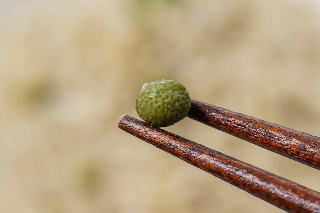 丸々とした大きめの山椒の実を箸でつまむ