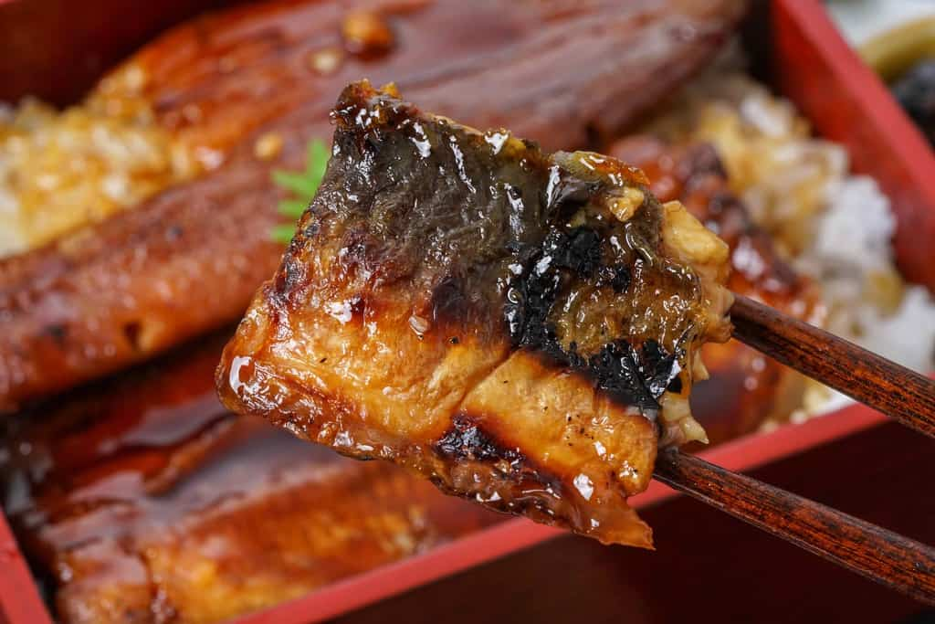 鰻蒲焼きの皮側を見せて箸でつまむ、炭火でパリッと焼かれたうなぎ蒲焼の皮
