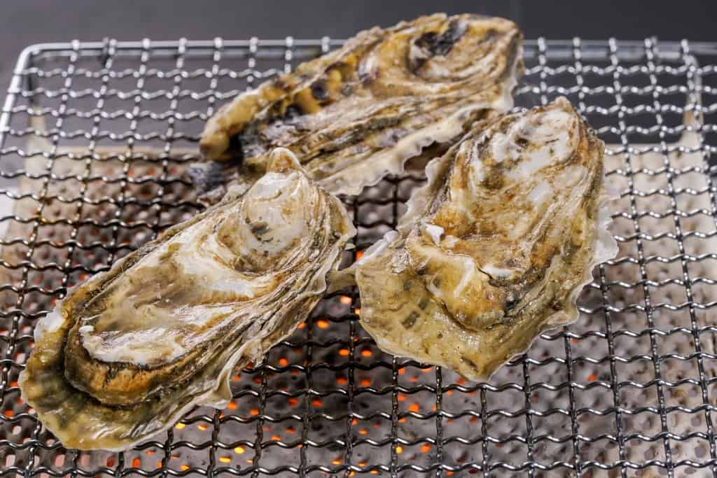 焼き網の上で殻付き牡蠣3個を焼く、殻付きのカキえもん3個を焼き網の上で焼く、焼き牡蠣