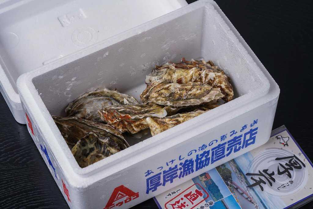 発泡スチロール箱の中に入った厚岸漁業協同組合エーウロコのカキえもんLLサイズ10個とリーフレット