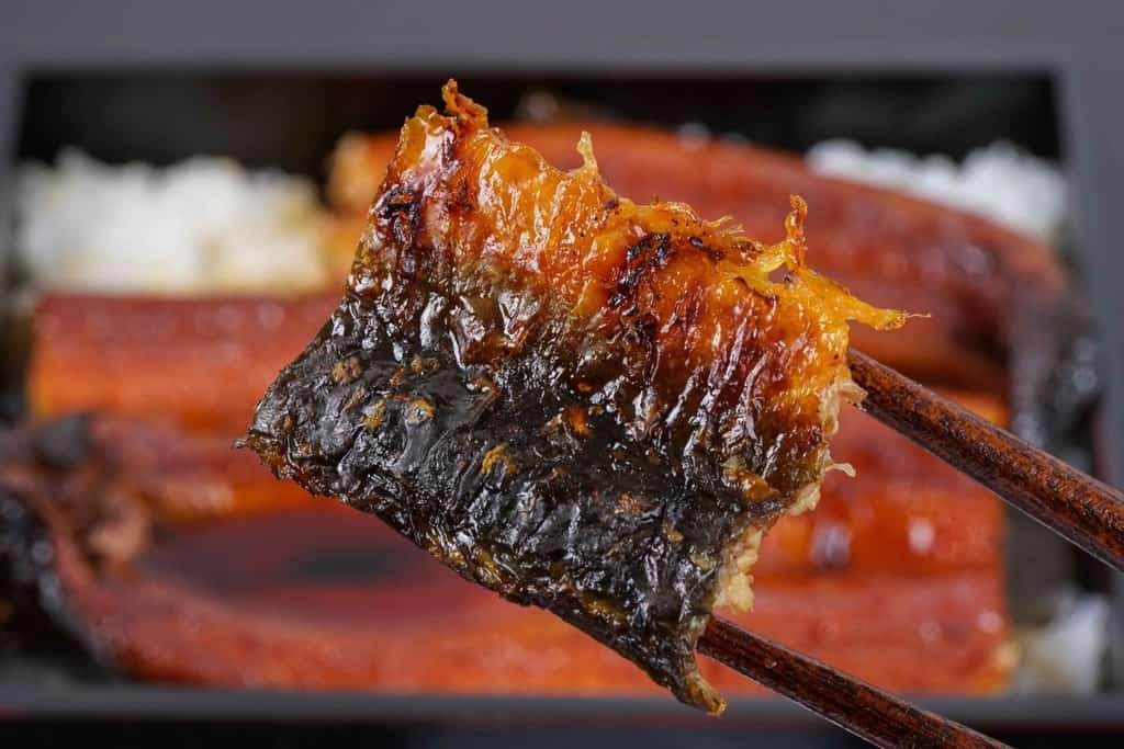 越前かに職人甲羅組の鹿児島県産特大うなぎ蒲焼きの皮側の焼き目