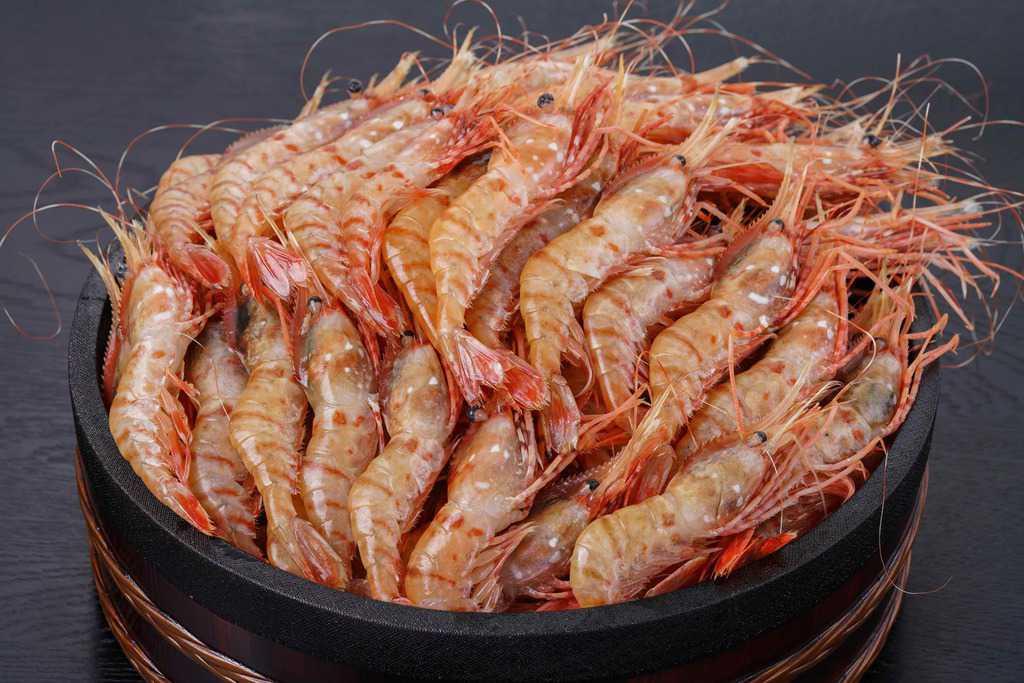 遠藤水産からお取り寄せした鮮度抜群のボタンエビ54尾、桶に盛られた大量の牡丹海老