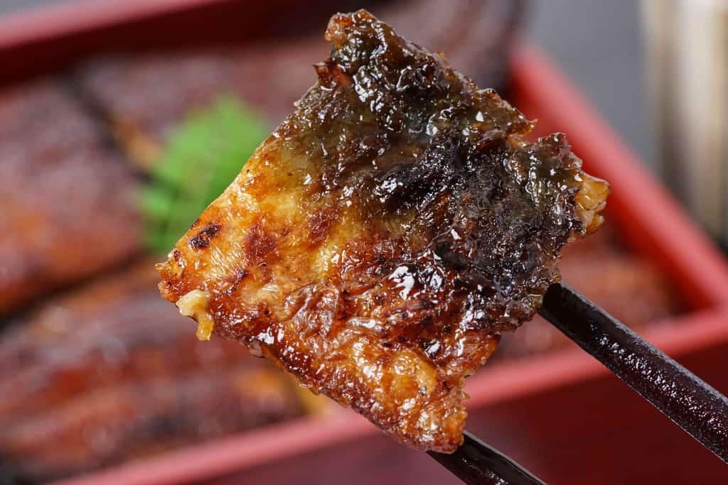 炭火焼きした鰻の蒲焼の皮、炭火焼きしてこんがりと焼きあがった鰻の蒲焼の皮