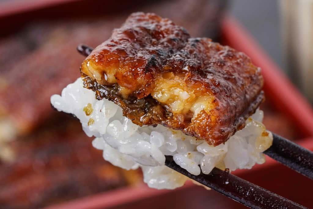 ご飯の上のウナギの炭火蒲焼き、白飯とうなぎの蒲焼を箸でつまむ