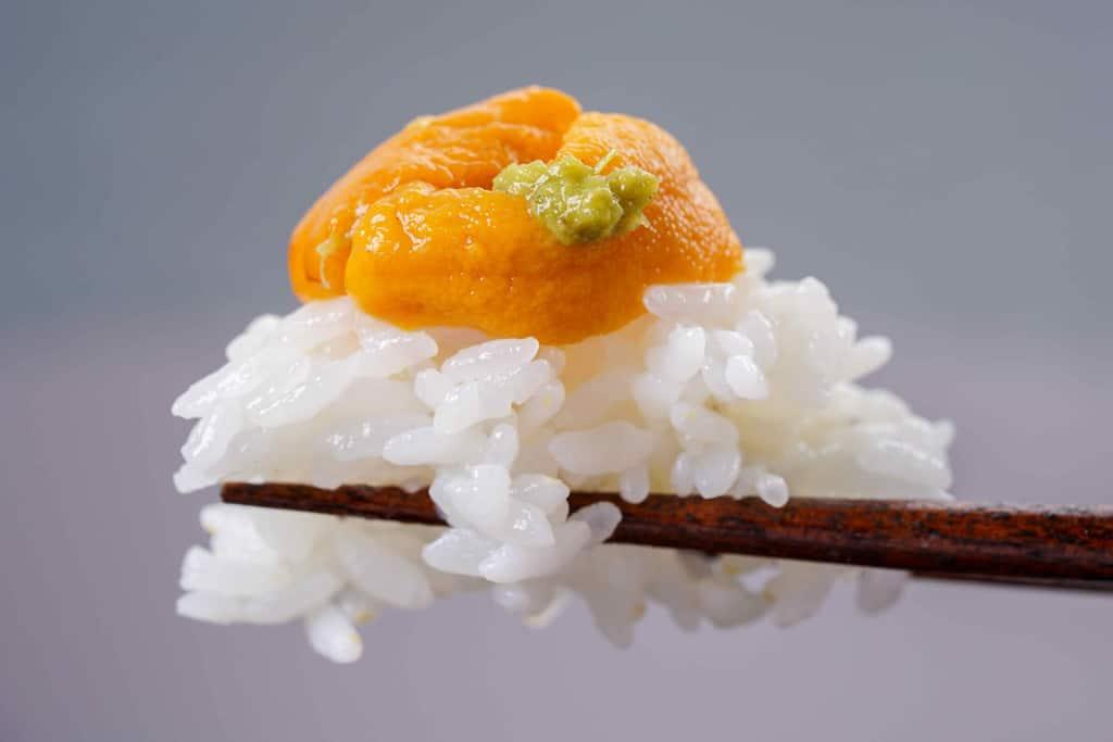 塩水生エゾバフンウニをご飯に乗せる、生うに丼をひとつまみ、箸の上のご飯・生ウニ・山葵