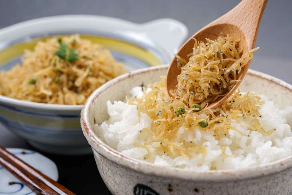 ちりめん山椒をご飯に盛り付ける、華とうのおじゃこと山椒を白飯にかける