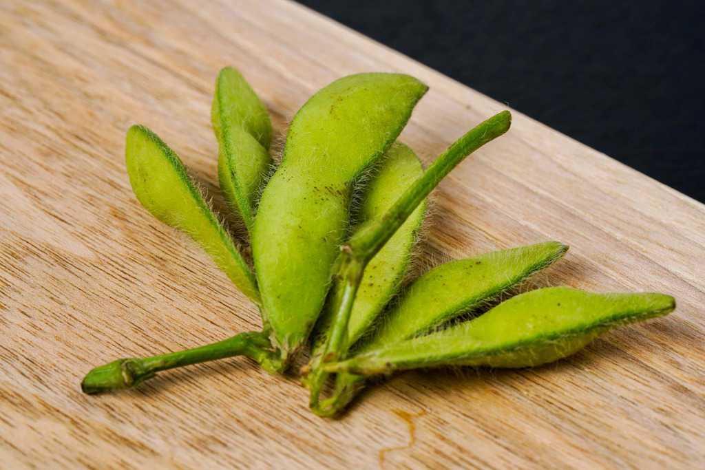カッティングボードの上のはねっ娘会の枝付き生枝豆