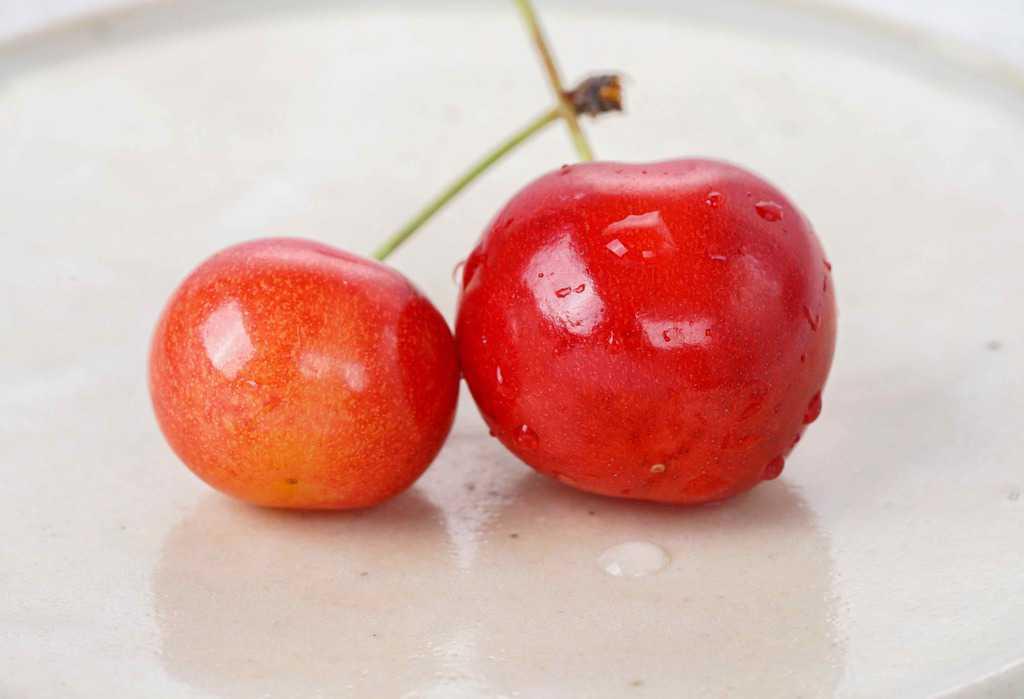 皿の上の山形県産さくらんぼ佐藤錦一粒と紅秀峰一粒