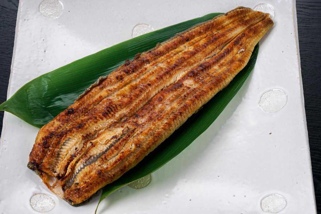 浜名湖山吹の活うなぎ長蒲焼き1本、身がふっくらとした関東風の鰻の蒲焼き