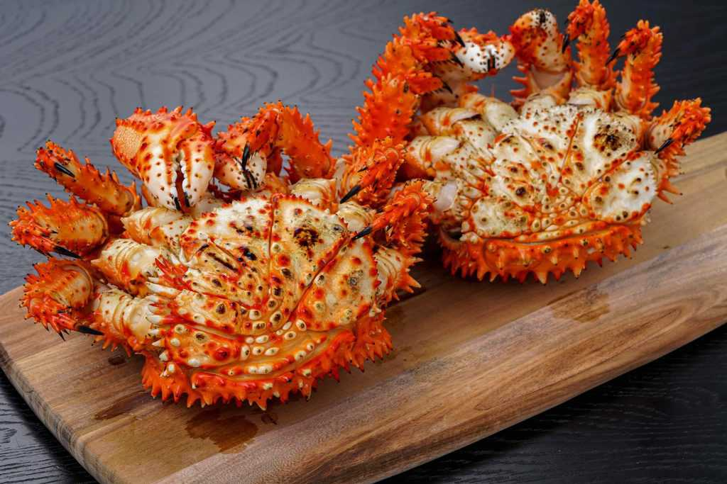 腹側が見える状態の花咲蟹、オスとメスの花咲ガニ
