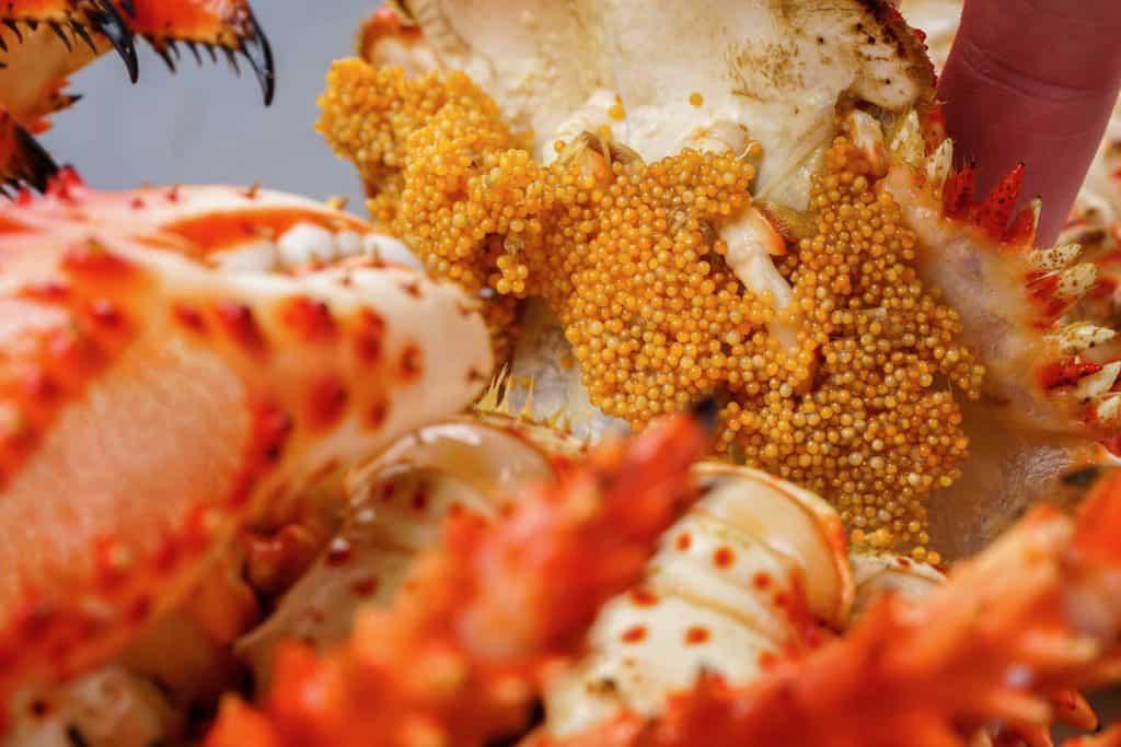 北海道産のボイル花咲蟹の外子
