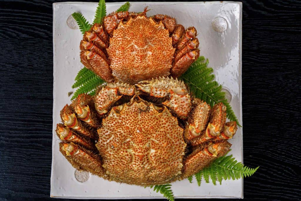 さっぽろ朝市高水の超特大ジャンボ毛蟹1.2kgと通常サイズの毛ガニ