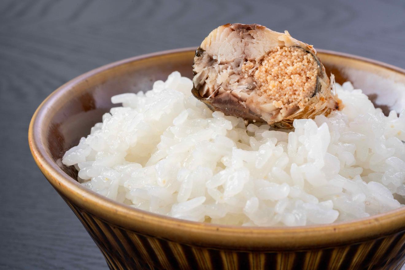 炊き立ての白いご飯の上に乗ったいわし明太子、島本食品のいわしめんたい
