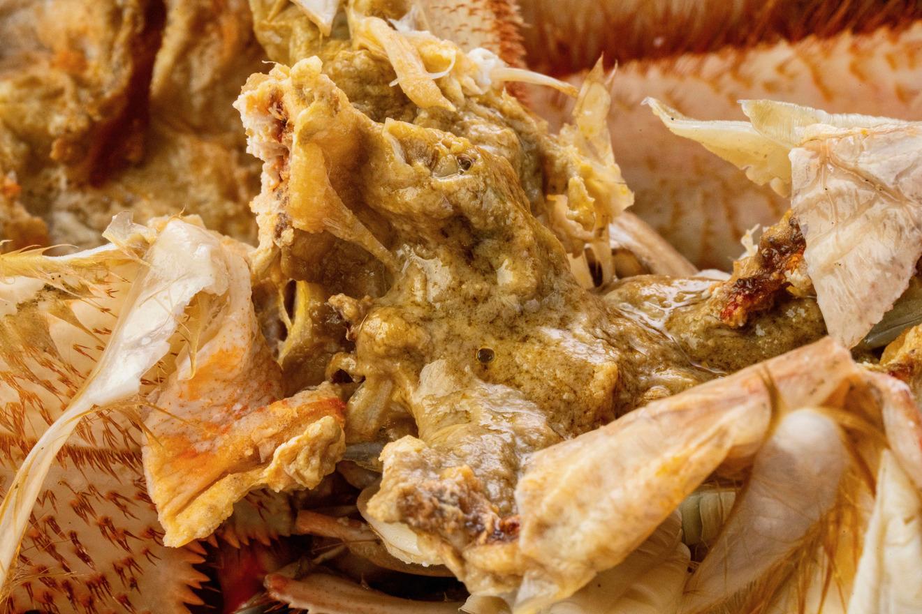 北海道ぎょれんから通販で購入した毛蟹の味噌、甲羅にたっぷり詰まった蟹味噌
